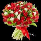 обожаю тюльпаны...